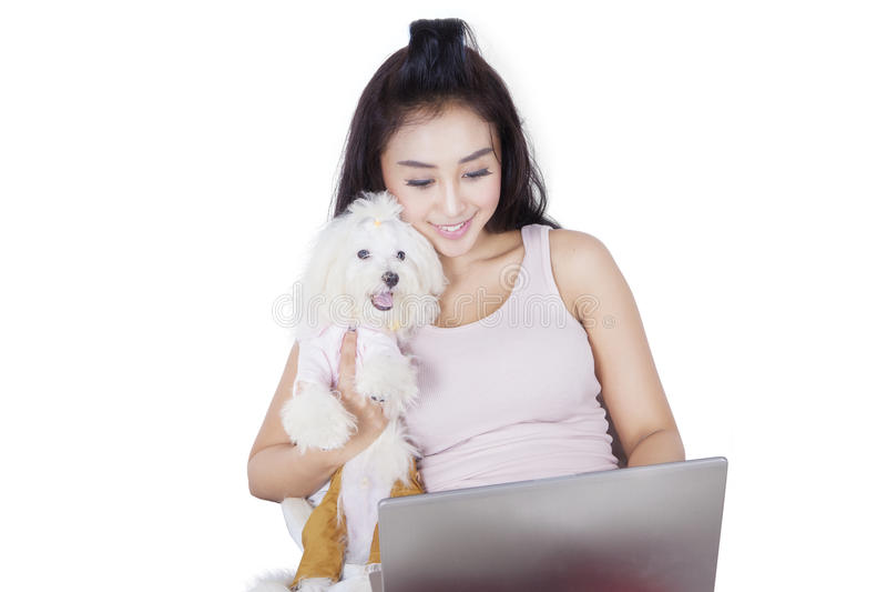 Young woman with Maltese dog on studio royalty free stock image