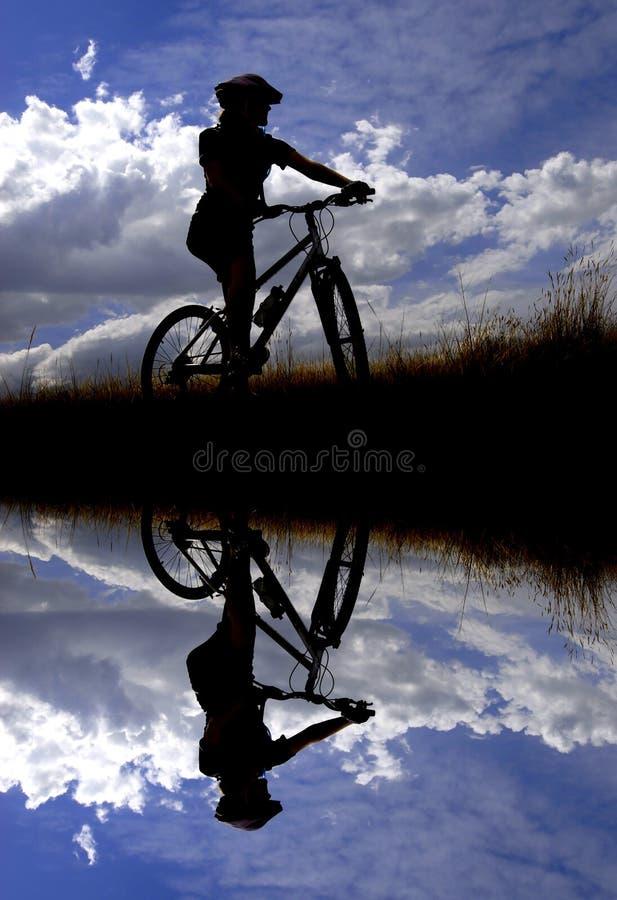 Young Woman Mountain Biking royalty free stock photos