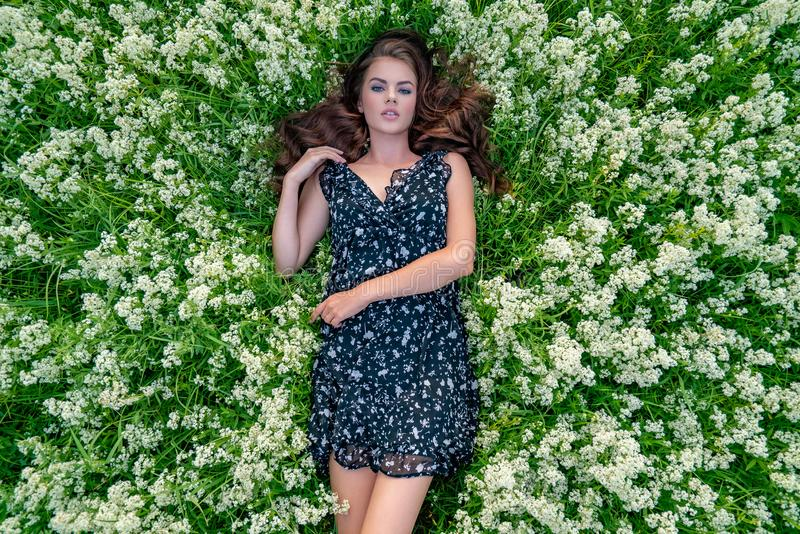 Young woman lying down in white lavender flowers royalty free stock image