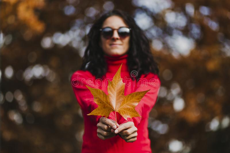 Young woman outdoors in a park holding a brown leave. Autumn concept. Selective focus. Background, beautiful, beauty, brunette, caucasian, cold, constructed stock photography