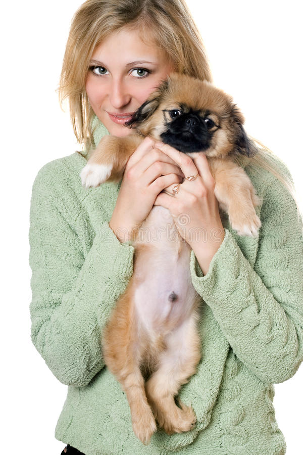 Young Woman With A Pekinese Royalty Free Stock Photo