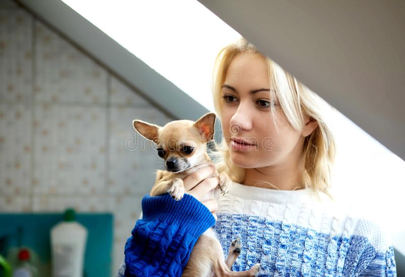 Young woman with pet dog stock images
