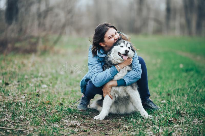 Young woman play with husky dog for a walk in spring forest. laughing having fun, happy with pet royalty free stock photo