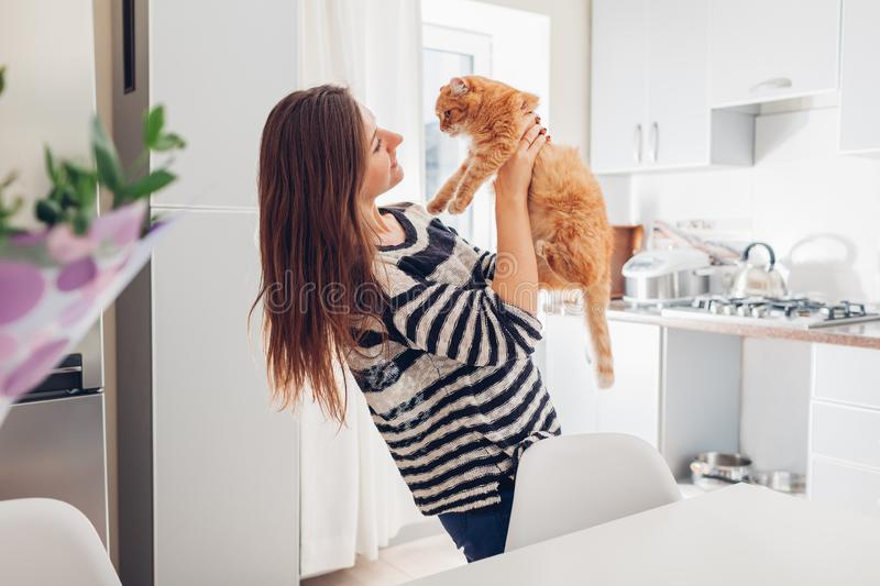 Young woman playing with cat in kitchen at home. Girl holding and raising red cat. Happy master having fun with her pet stock images