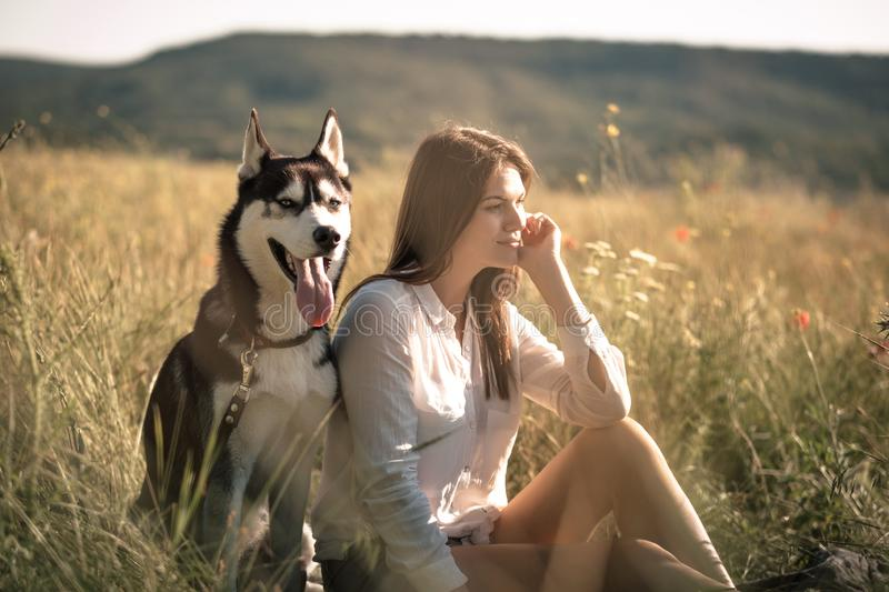 Young woman playing with funny husky dog outdoors at park. Beautiful young woman playing with funny husky dog outdoors at park. Summertime and sunset stock photo