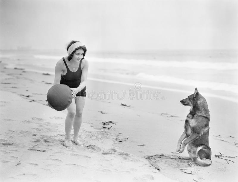 Young woman playing with her dog and ball on the beach stock images