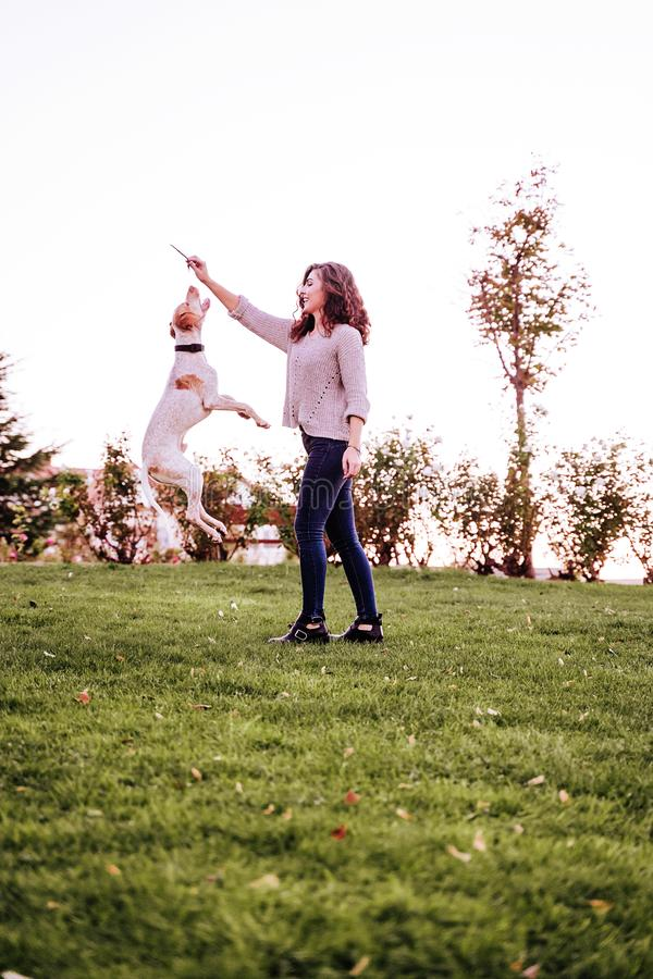 young woman playing with her dog at the park. autumn season. dog jumping royalty free stock photo