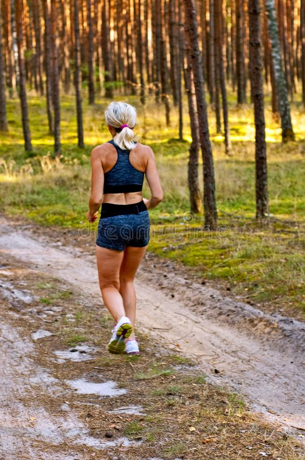 Jogging in the woods royalty free stock images