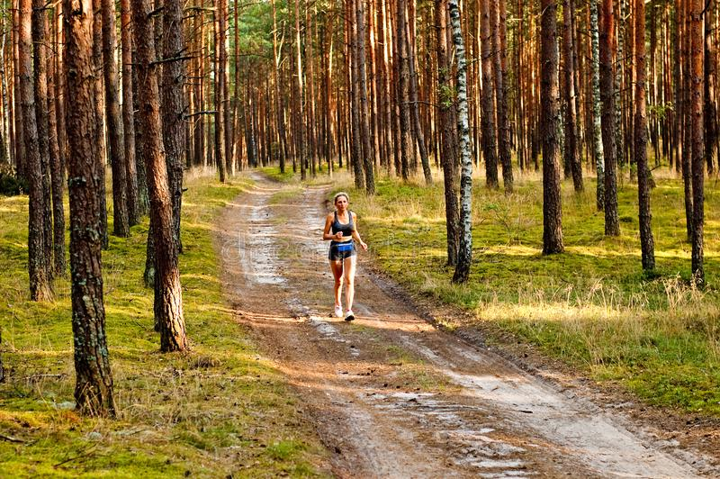 Jogging in the woods stock photography