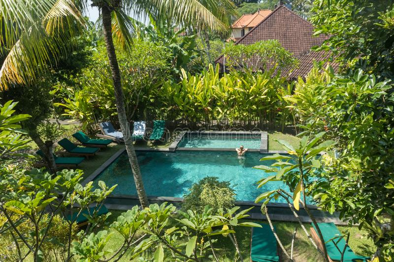 Young woman relaxing in outdoor swimming pool surrounded with lush tropical greenery of Ubud, Bali. Luxury tropical retreat vacation concept stock photos