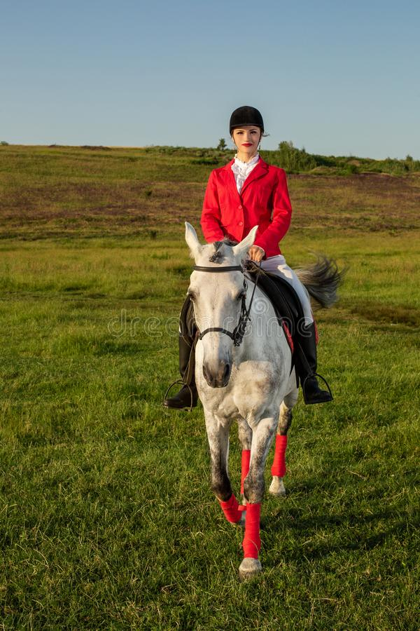 Young woman rider, wearing red redingote and white breeches, with her horse in evening sunset light. stock photography