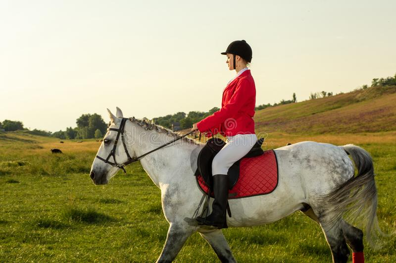 Young woman rider, wearing red redingote and white breeches, with her horse in evening sunset light. stock image
