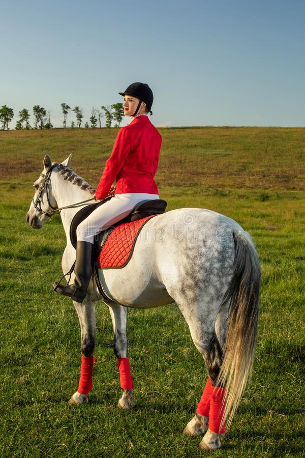 Young woman rider, wearing red redingote and white breeches, with her horse in evening sunset light. stock photos