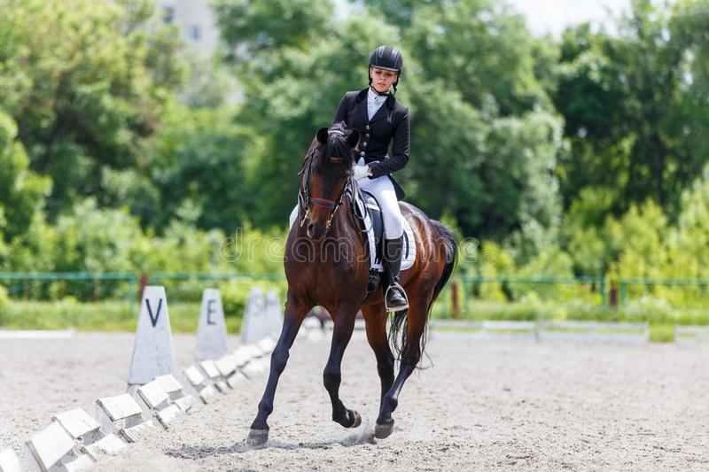 Young woman riding horse on dressage advanced test. Young woman riding horse on equestriansport competition in dressage advanced test royalty free stock photo
