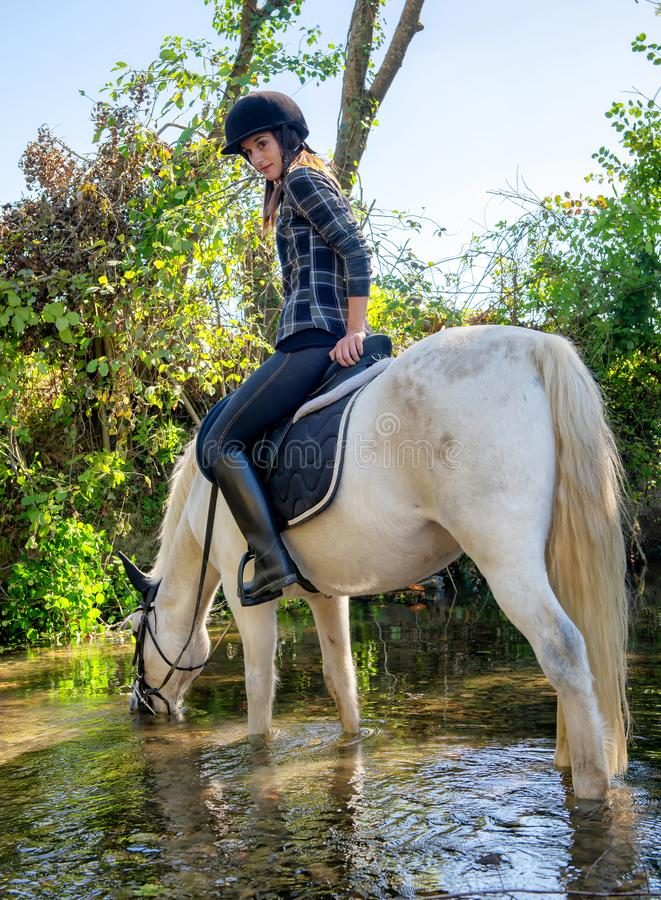 Young woman riding a horse in the river A beautiful rider and ho royalty free stock photography
