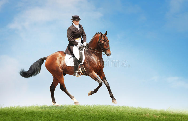 Young woman riding horse on the top of the hill. Equestrian sport - dressage. royalty free stock photography