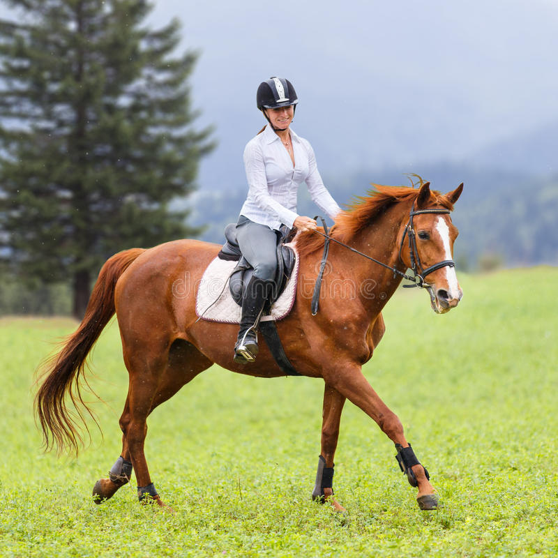 Young woman riding sorrel horse on mountain meadow royalty free stock images