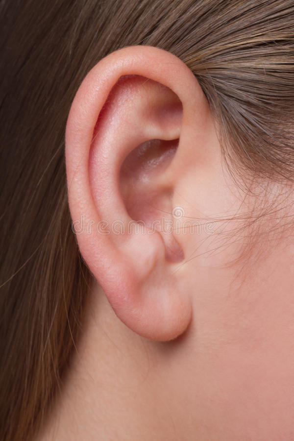Download A Young Woman's Ear Close-up Stock Photo - Image: 23064316