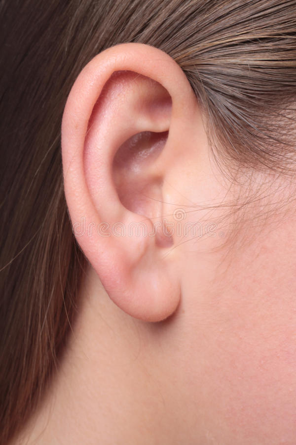 A young woman`s ear very close-up. Shoot of a young woman`s ear very close-up stock photos