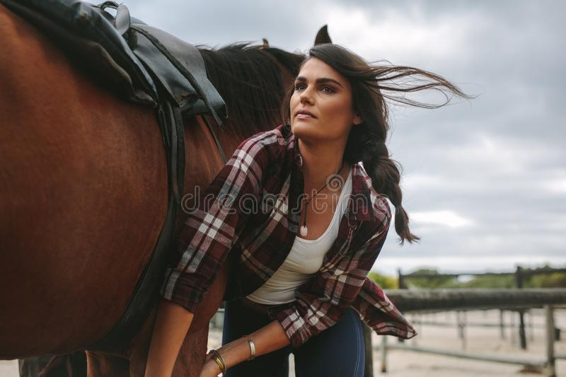 Young woman saddling the horse royalty free stock image
