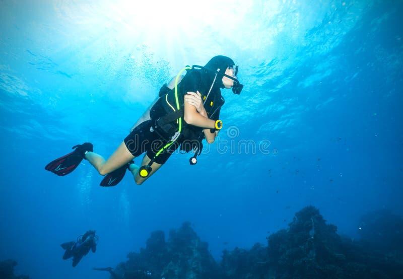 Young woman scuba diver exploring sea bottom stock photography