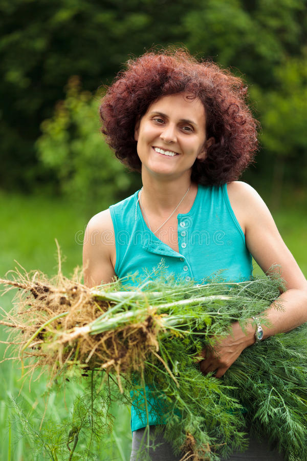 Young woman with a sheaf of dill. Young farmer woman holding a sheaf of dill freshly picked royalty free stock photos
