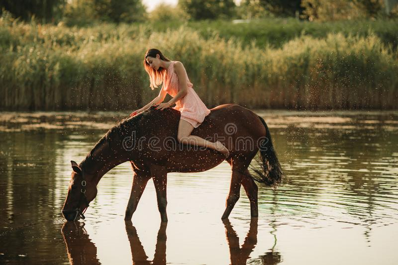 Woman sits astride a horse that drinks water on background of water splashes stock image