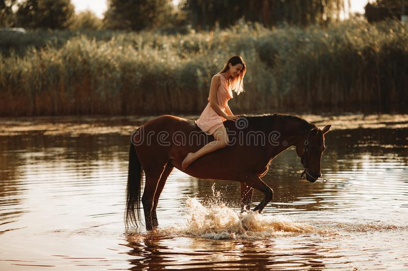 Woman sits astride a horse that produces splashes on water. A young woman sits astride a horse that produces splashes on the water royalty free stock image