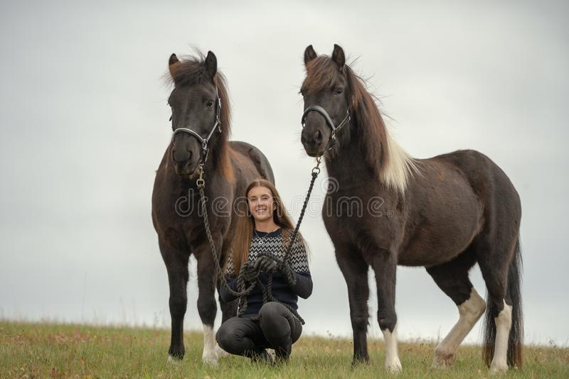 Young Swedish woman in a field with her two Icelandic horses stock photography