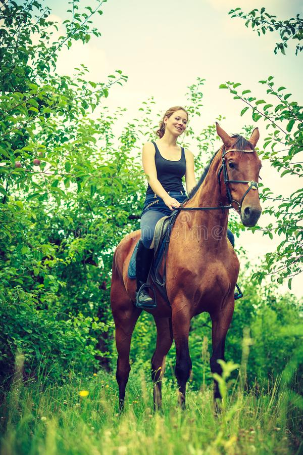 Young woman sitting on a horse. Animal, horsemanship concept. Young woman sitting and ridding on a horse through garden on sunny spring day stock image