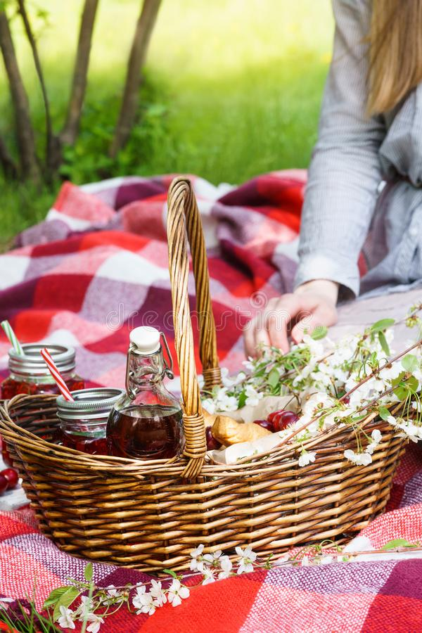 Young woman sitting on red blanket next to picnic basket royalty free stock photography