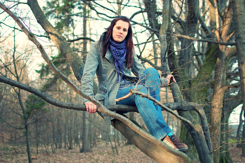 Download Young Woman Sitting On Tree In The Forest Stock Photo - Image: 17826222