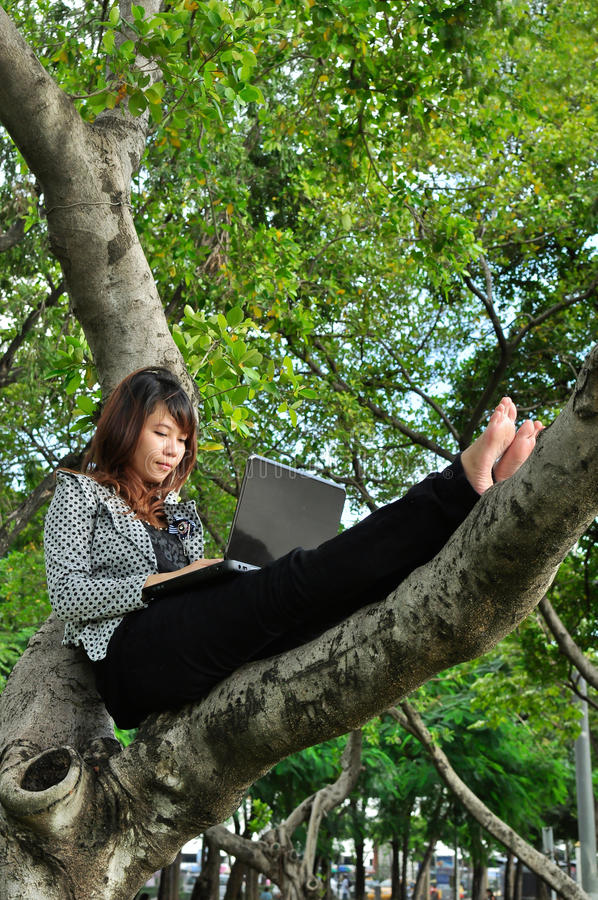 Young woman sitting on the tree and playing laptop royalty free stock image