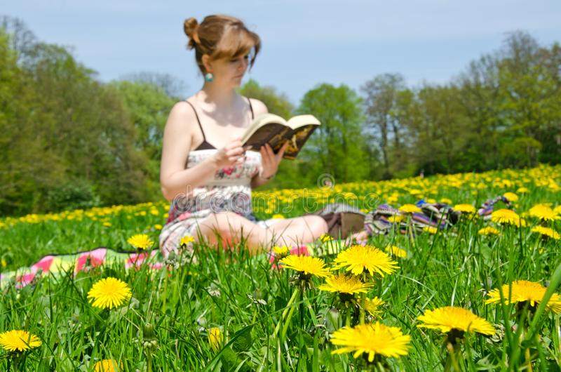 Young woman sitting on a flower meadow and reading a book stock photo