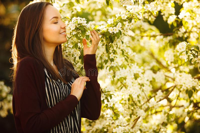 Young woman sniffs a blossoming tree. beautiful girl in spring park. stock photos