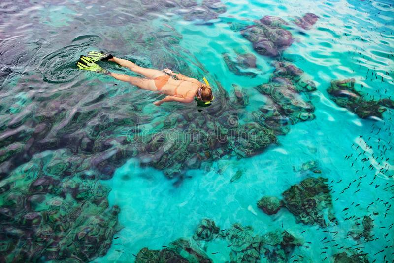 Young woman snorkeling with coral reef fishes. Young girl in snorkeling mask dive underwater with tropical fishes in coral reef sea pool. Travel lifestyle, water royalty free stock image