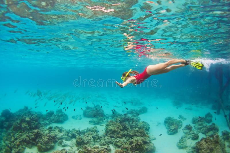 Young woman in snorkeling mask dive underwater with tropical fishes stock image
