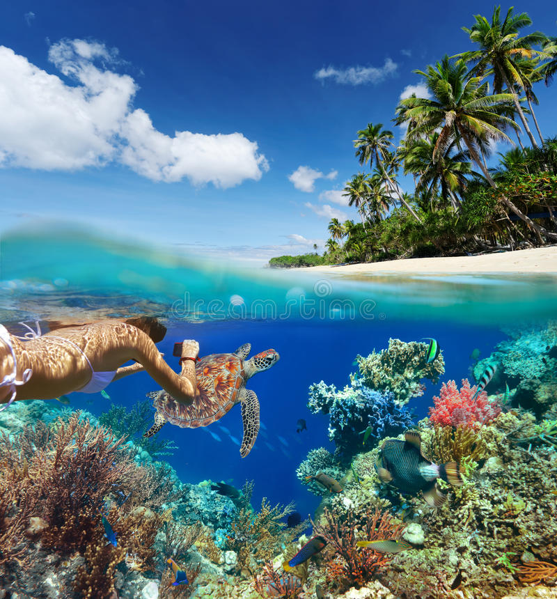 Free Young Woman Snorkeling Over Coral Reef In Tropical Sea. Royalty Free Stock Images - 50413629
