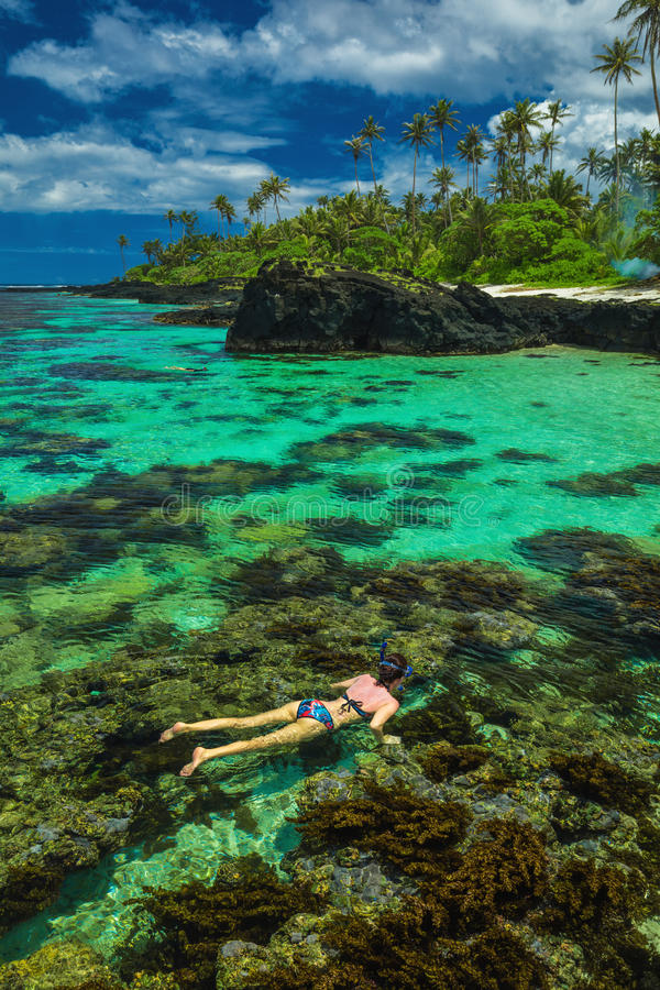 Young woman snorkeling over coral reef on a tropical island royalty free stock image