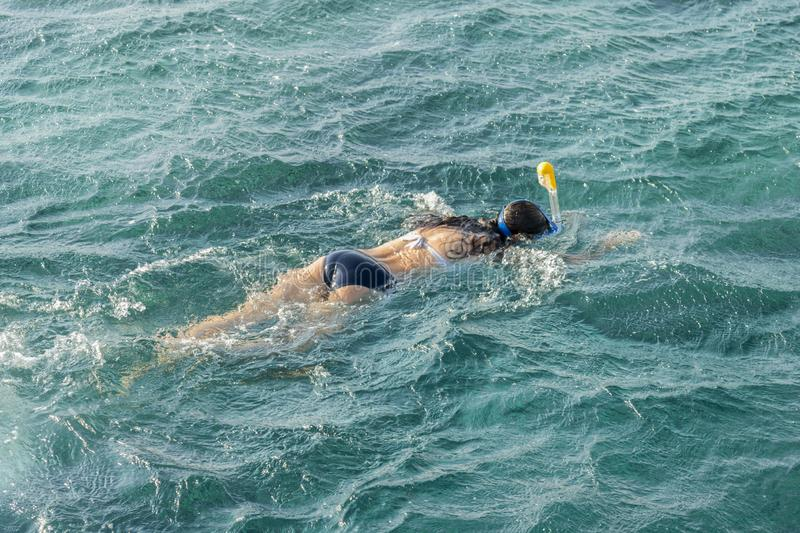 Young woman snorkeling in transparent shallow. Young woman at snorkeling in the tropical water. active woman free diving stock photos