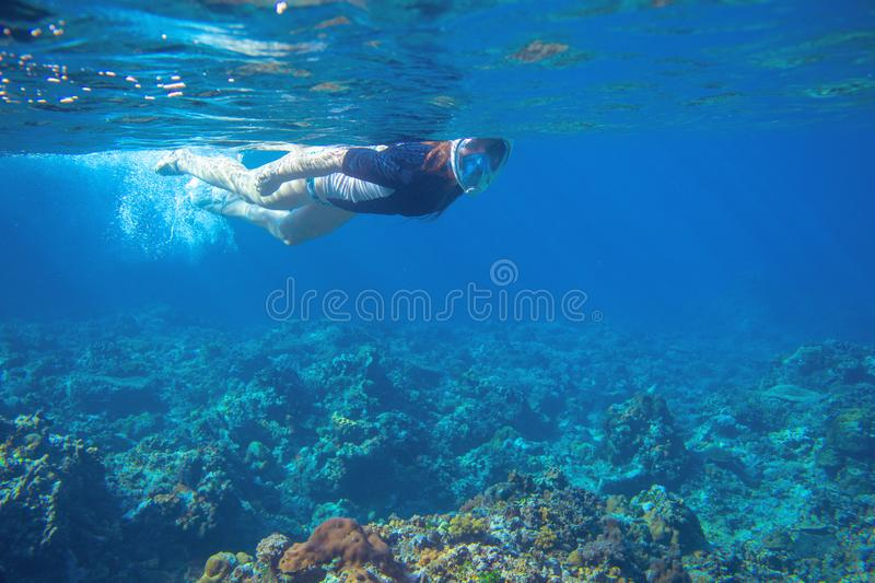 Young woman snorkeling underwater photo. Snorkel in coral reef of tropical sea. Young girl in fullface snorkeling mask royalty free stock photo