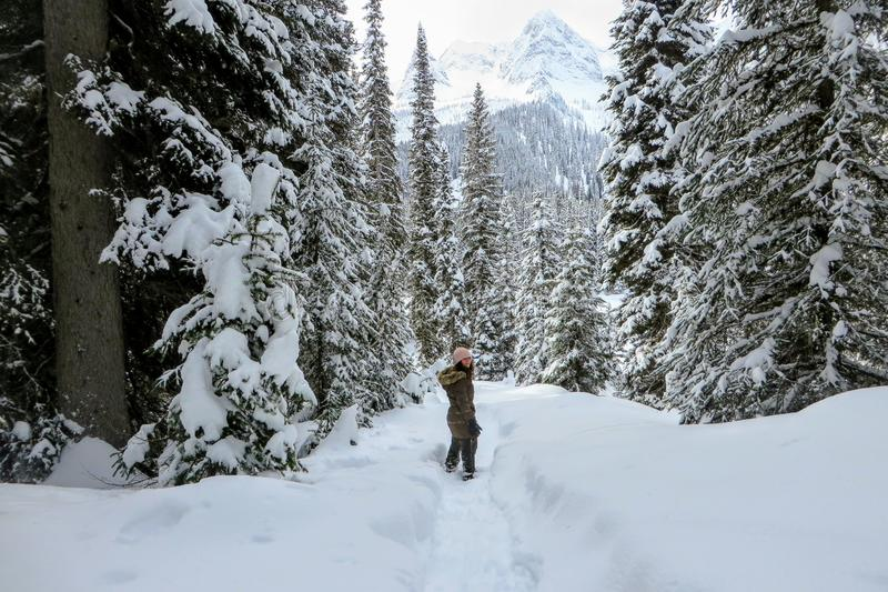 A young woman snowshoeing through forests of Island Lake in Fernie, British Columbia, Canada. The majestic winter background is an absolutely beautiful place royalty free stock photography