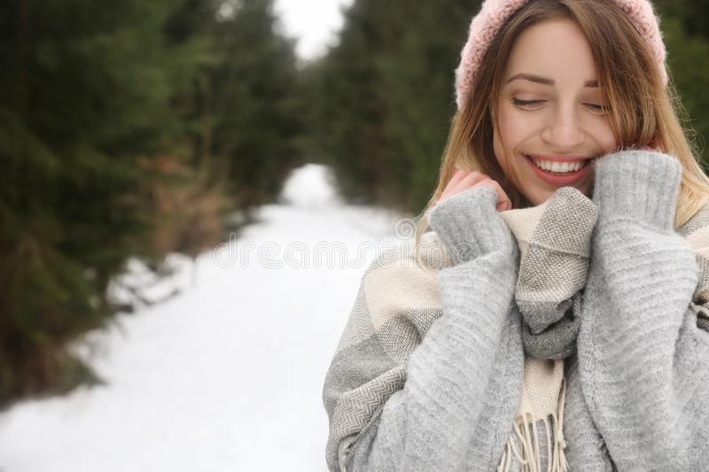 Young woman in snowy conifer forest, space for text. Winter. Vacation stock photos