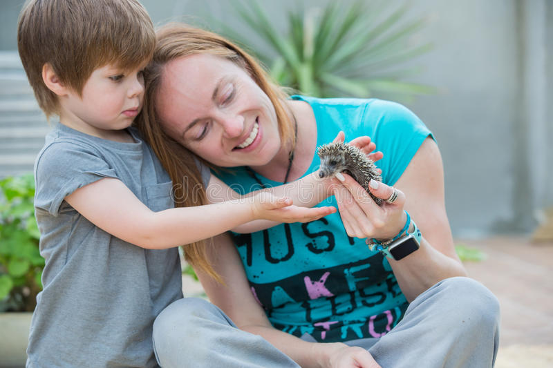 Young woman with son playing with hedgehog baby. Young women with son playing with little hedgehog baby royalty free stock photography
