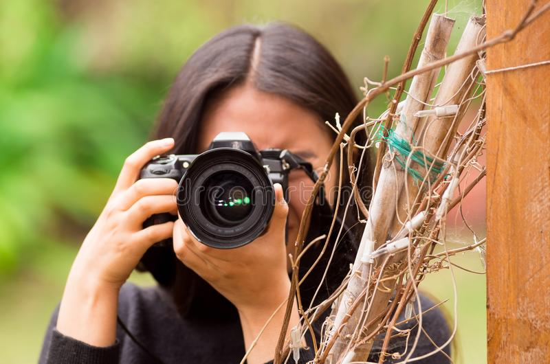 Young woman stalking and taking pictures with her camera, at outside stock images