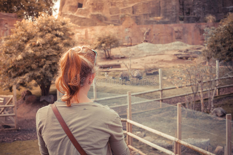 Young woman standing by animal enclosure. A young woman is standing by an animal enclosure stock photo
