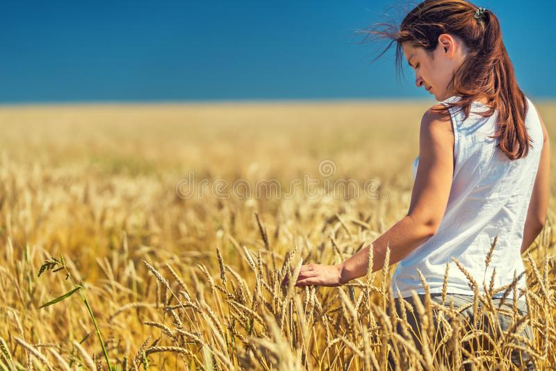 Young woman standing on golden wheat field at sunny day. royalty free stock images
