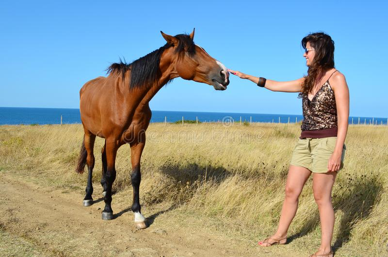 Woman with Beautiful Red Horse on the Beach. Young woman stroking a red horse grazing in the meadow on the sea royalty free stock image