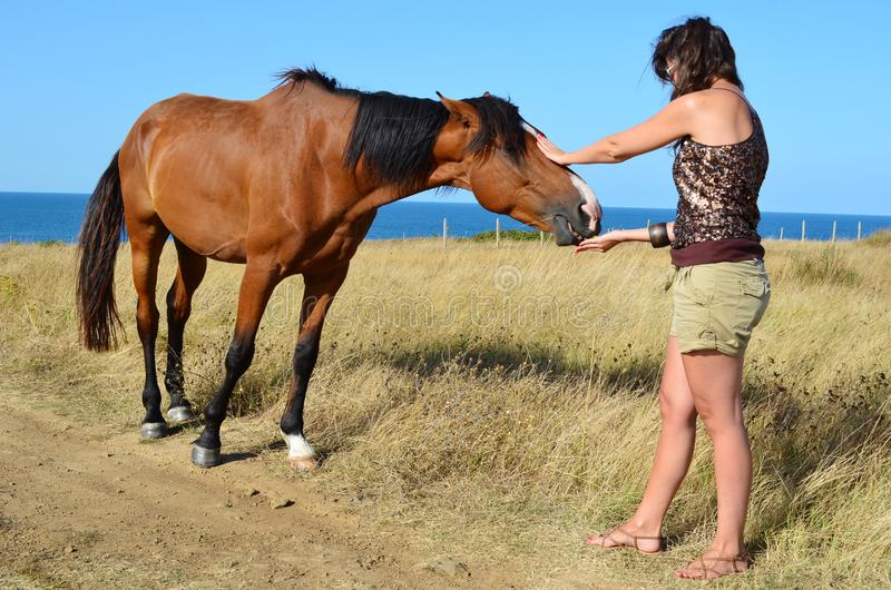 Woman with Beautiful Red Horse on the Beach. Young woman stroking a red horse grazing in the meadow on the sea royalty free stock photo