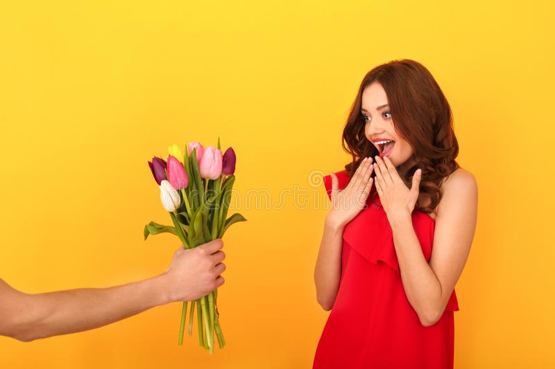 Young woman studio isolated on yellow in a red dress getting tulips bouquet royalty free stock photography